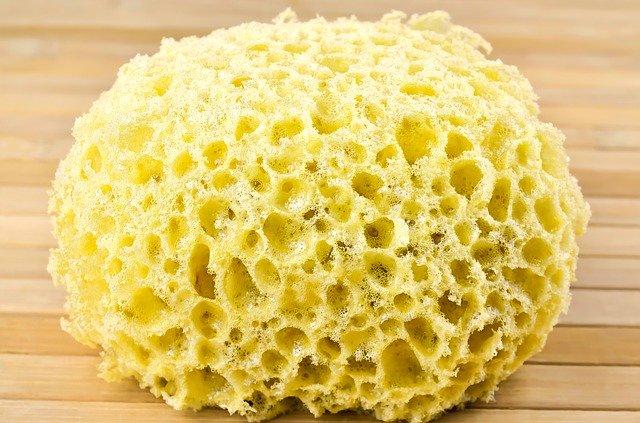 sponge-for-washing-1212612_640
